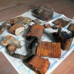 Гучаць імёны герояў. У Петрыкаўскім раёне знайшлі астанкі 11 чырвонаармейцаў