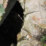 В Петриковском районе рабочий сельхозпредприятия избил коллегу и сбросил в канализационный люк