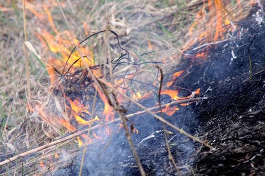 Огонь горит – беду творит