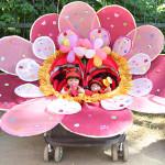 Парад детских колясок пройдет в Петрикове 29 июля