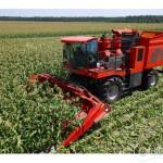 В Рогачевском районе под колесами кукурузоуборочного комбайна погиб мужчина