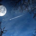 Звездопад Персеиды смогут наблюдать белорусы в ночь с 12 на 13 августа