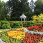 Аллея академиков появится в Ботаническом саду в честь Года науки