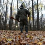 В Беларуси с 1 октября открывается загонная охота на копытных