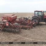 Хозяйства Гомельской области приступили к севу озимых на зерно