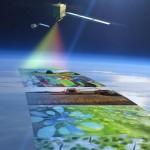 Ученые составляют карту растительности Беларуси с использованием космических снимков