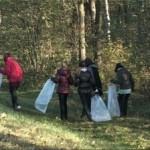 Акция «Чистый лес» пройдет в Беларуси 7 октября