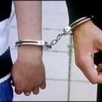 МВД раскрыло подробности задержания супругов из Беларуси, разыскиваемых по линии Интерпола