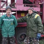 """""""Ульянаўская"""" бульба дае  200 цэнтнераў з гектара"""