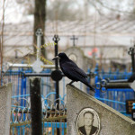 У Петрыкаве афіцыйна зачынены старыя могілкі