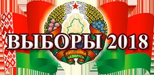 Выборы-2018