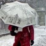 Оранжевый уровень опасности из-за порывистого ветра объявлен в Беларуси 1 декабря