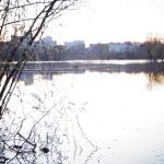 Тело женщины обнаружено в реке Сож в Гомеле