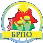 В Гомеле выберут новых лидеров Белорусской республиканской пионерской организации