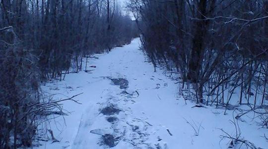 Пенсионер провалился под лед на реке в Пуховичском районе