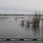 Паромная переправа через Припять будет организована в марте