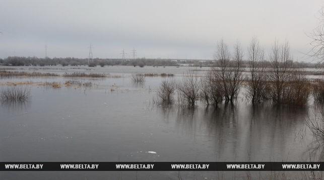 Восстановление понтонного моста через Припять в нынешних погодных условиях нецелесообразно— эксперт