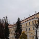 Музей Белорусского Полесья организует серию выставок одного экспоната
