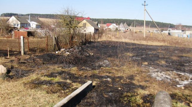 В Волковысском районе на месте пала сухой травы обнаружен погибший мужчина