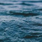 В Быховском районе рыбак утонул на глазах 9-летней дочери