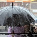 В Житковичах за день выпало более 40% месячной нормы осадков