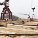 Опытный образец электронной системы учета древесины разработают в 2019 году