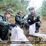Акция «Чистый лес» пройдет в Беларуси 20 октября